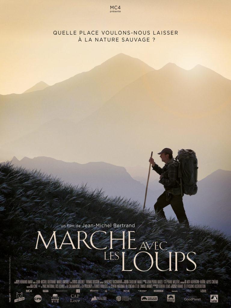"""""""Marche avec les loups"""": un documentaire qui crispe les éleveurs"""