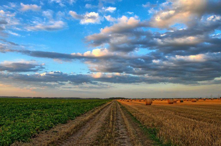 PAC :  une politique orientée vers la transition écologique ?