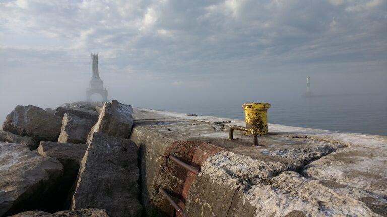 """Infrastructures maritimes: """"mimer"""" la nature pour préserver la biodiversité"""