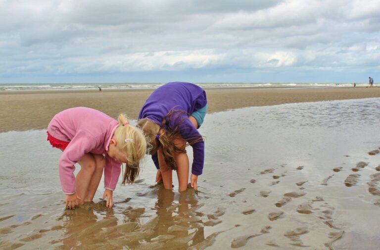 Les aires éducatives, pour sensibiliser les enfants à l'environnement