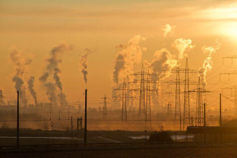 3000 milliards de dollars par an ! C'est le prix de l'effondrement des écosystèmes.